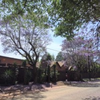 MOVE IN TODAY :: Rooms in chilled INTERNATIONAL STUDENT HOUSESHARE Randburg, Sudafrica