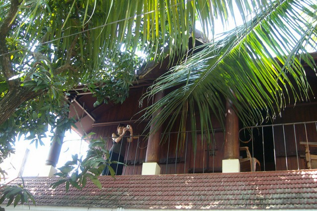 adams homestay cochin - a friendly place to stay